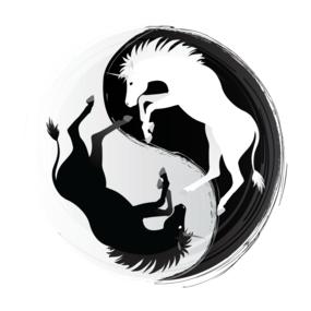 Unicorn Yin Yang