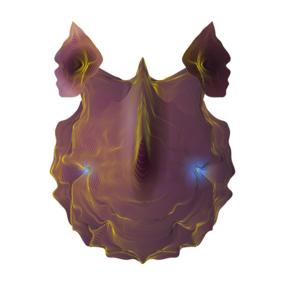 Neon Beasts - Rhino